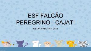 ESF FALCO PEREGRINO CAJATI RETROSPECTIVA 2014 ESF Estratgia