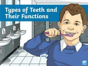 Teeth IDid canyou feelknow that my teeth are