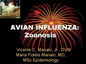 AVIAN INFLUENZA Zoonosis Vicente C Manalo Jr DVM