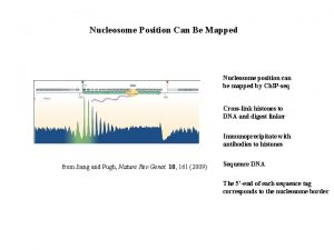 Nucleosome Position Can Be Mapped Nucleosome position can