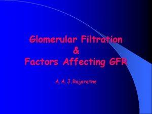 Glomerular Filtration Factors Affecting GFR A A J