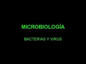MICROBIOLOGA BACTERIAS Y VIRUS BACTERIAS REINO MONERAS DOMINIOS