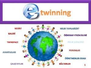 Twinning twinning NEDR NELER YAPILABLR GALER TWINSPACE AVANTAJLARI