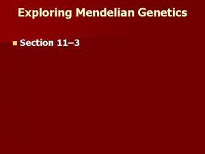 Exploring Mendelian Genetics n Section 11 3 Independent