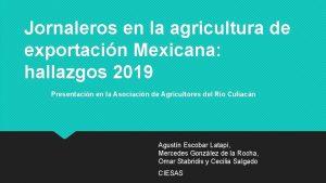 Jornaleros en la agricultura de exportacin Mexicana hallazgos