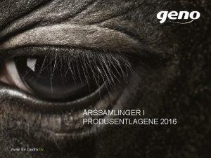 RSSAMLINGER I PRODUSENTLAGENE 2016 NASJONALT OG INTERNASJONALT SALG