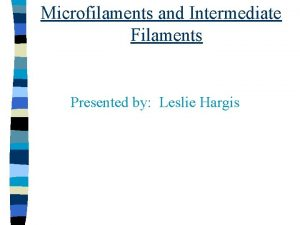 Microfilaments and Intermediate Filaments Presented by Leslie Hargis