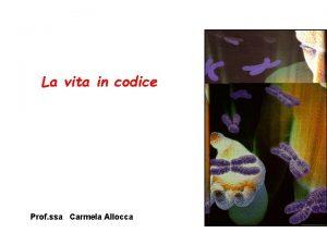La vita in codice Prof ssa Carmela Allocca
