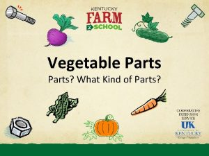 Vegetable Parts What Kind of Parts Vegetable parts
