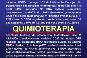 catenina PDGFb oncogen p 21 diploide mutacin cjun