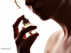 El sentido del olfato Gracias a los sentidos