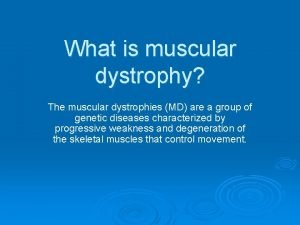 What is muscular dystrophy The muscular dystrophies MD