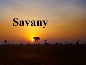 Savany Savana je porast v tropickch a subtropickch