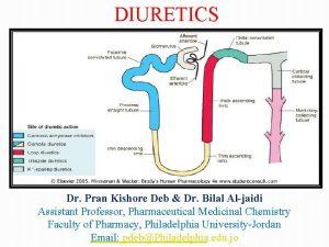 DIURETICS Dr Pran Kishore Deb Dr Bilal Aljaidi