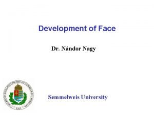 Development of Face Dr Nndor Nagy Semmelweis University