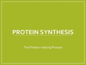 PROTEIN SYNTHESIS The Proteinmaking Process Protein Synthesis Gene