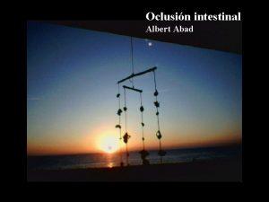 Oclusin intestinal Albert Abad Oclusin intestinal Interrupcin del