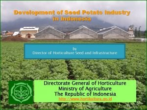 Development of Seed Potato Industry in Indonesia by