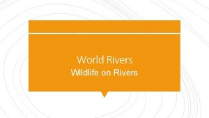 World Rivers Wildlife on Rivers How do rivers
