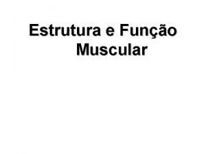 Estrutura e Funo Muscular Funo do msculo esqueltico
