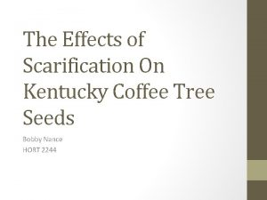 The Effects of Scarification On Kentucky Coffee Tree