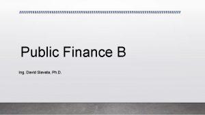 Public Finance B Ing David Slavata Ph D