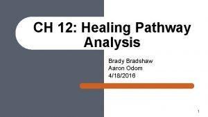 CH 12 Healing Pathway Analysis Brady Bradshaw Aaron