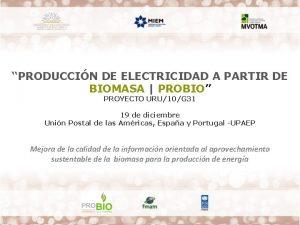 PRODUCCIN DE ELECTRICIDAD A PARTIR DE BIOMASA PROBIO