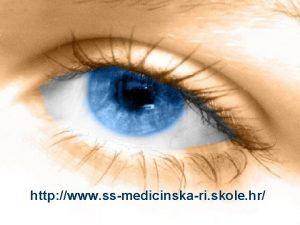 http www ssmedicinskari skole hr 10112020 alen vukeli