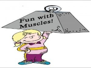 Muscular System Unit F Muscle Anatomy Muscular System