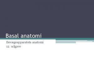 Basal anatomi Bevgeapparatets anatomi 12 udgave Basal anatomi
