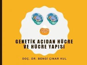 GENETK AIDAN HCRE VE HCRE YAPISI DO DR