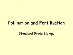 Pollination and Fertilisation Standard Grade Biology Pollination Selfpollination