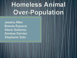 Homeless Animal OverPopulation Jessica Allen Brenda Esparza Alexis