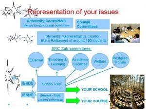 Representation of your issues University Committees Senate Senate