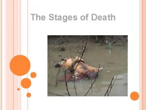 The Stages of Death BEFORE AND AFTER DEATH