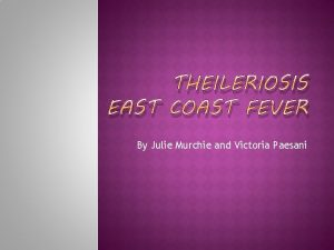 THEILERIOSIS EAST COAST FEVER By Julie Murchie and
