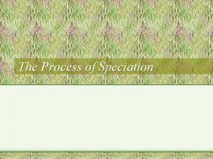 The Process of Speciation What is Speciation The