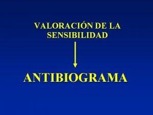 VALORACIN DE LA SENSIBILIDAD ANTIBIOGRAMA ANTIBIOGRAMA MTODOS Diluciones