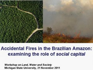 Accidental Fires in the Brazilian Amazon examining the
