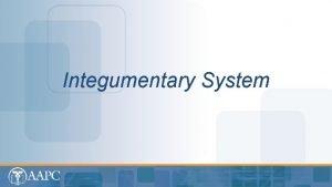 Integumentary System CPT copyright 2012 American Medical Association