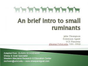 An brief intro to small ruminants John Thompson