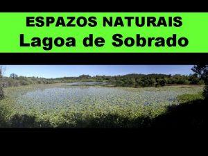 ESPAZOS NATURAIS Lagoa de Sobrado A lagoa de