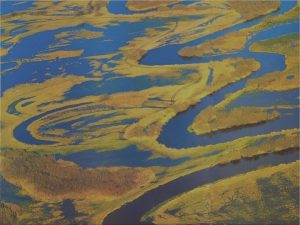 Hydraulic Modelling of wetland flow Data collection and