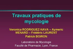 Travaux pratiques de mycologie Veronica RODRIGUEZNAVA Aymeric MENARD