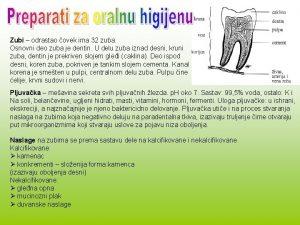 Zubi odrastao ovek ima 32 zuba Osnovni deo