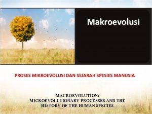 Makroevolusi PROSES MIKROEVOLUSI DAN SEJARAH SPESIES MANUSIA MACROEVOLUTION