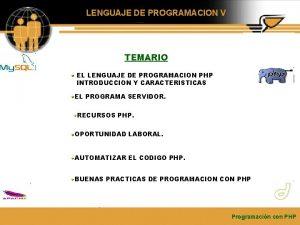 LENGUAJE DE PROGRAMACION V TEMARIO EL LENGUAJE DE