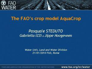 The FAOs crop model Aqua Crop Pasquale STEDUTO