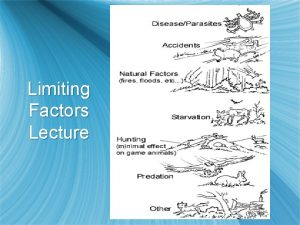 Limiting Factors Lecture What are Limiting factors s